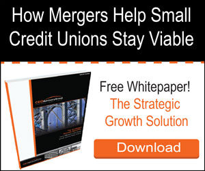 Free Whitepaper - Small Credit Union Mergers!